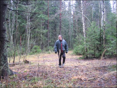 Aamureippailua metsässä